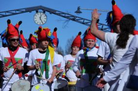 King parrot bloco de samba